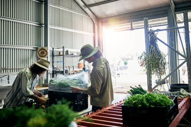 verpackung-produkte - landwirtschaftlicher beruf stock-fotos und bilder