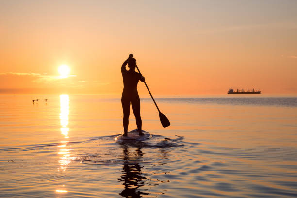 Paddle Boarding during Sunset Adventurous girl on a paddle board is paddeling during a bright and vibrant sunset. Taken near Spanish Banks, Vancouver, British Columbia, Canada. wetsuit stock pictures, royalty-free photos & images
