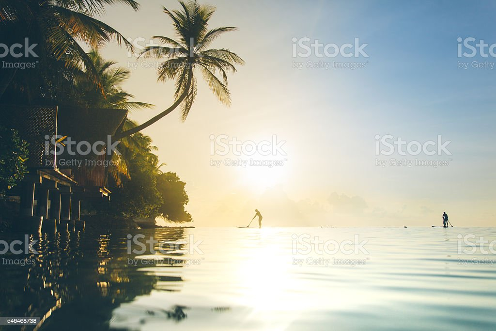 Paddle boards at Sunset stock photo