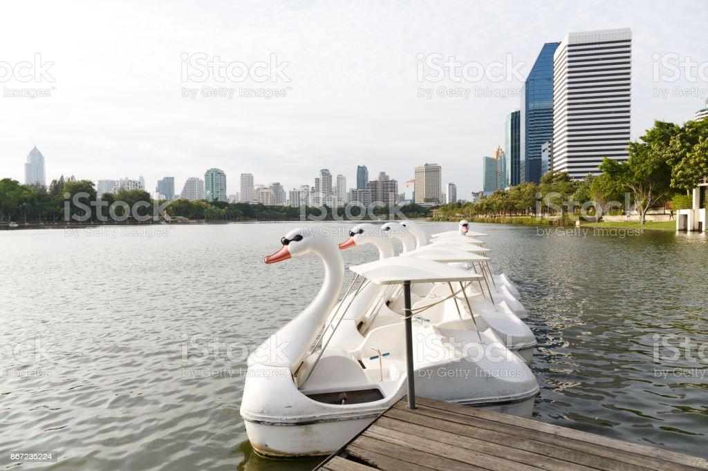 Paddle boat shaped swan shot stock photo