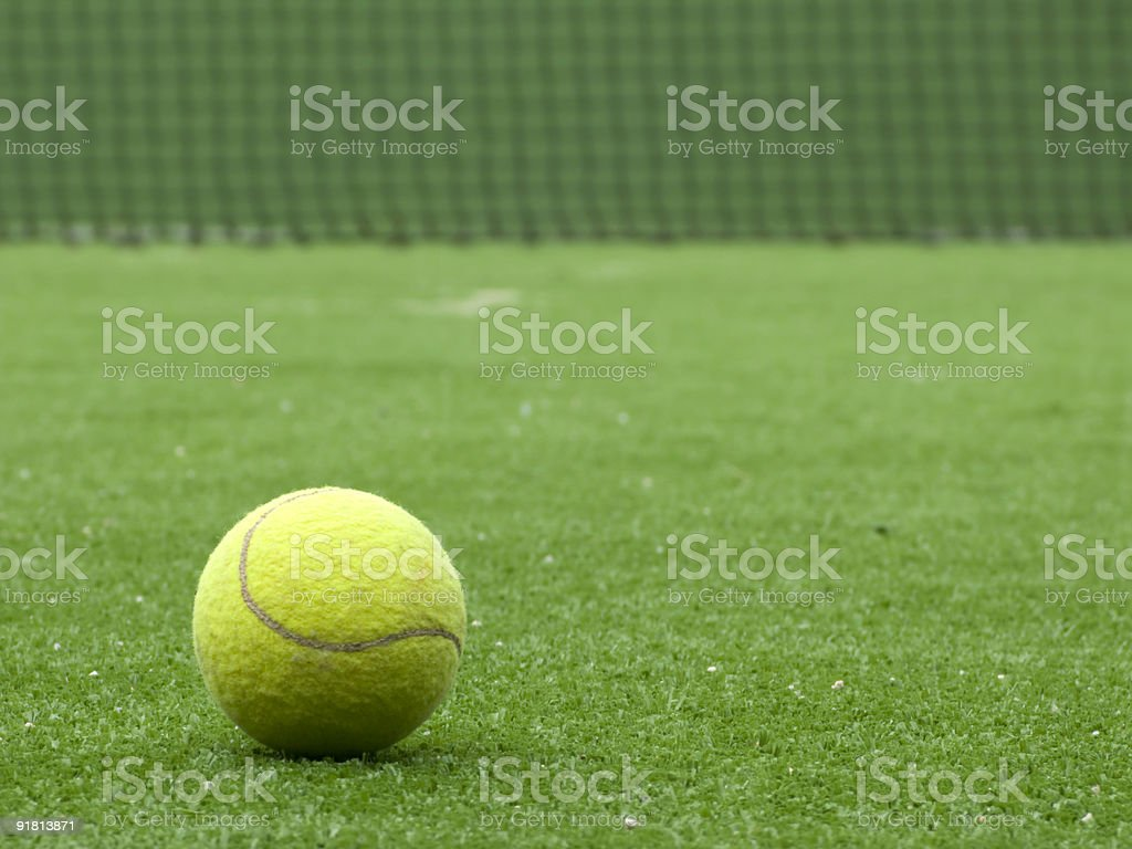 Paddle tennis ball on the grass royalty-free stock photo