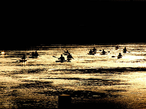 Paddlers on golden water stock photo
