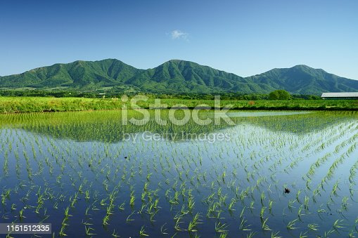 istock A paddy field and 3 peaks of Mt. Hiruzen in early summer 1151512335