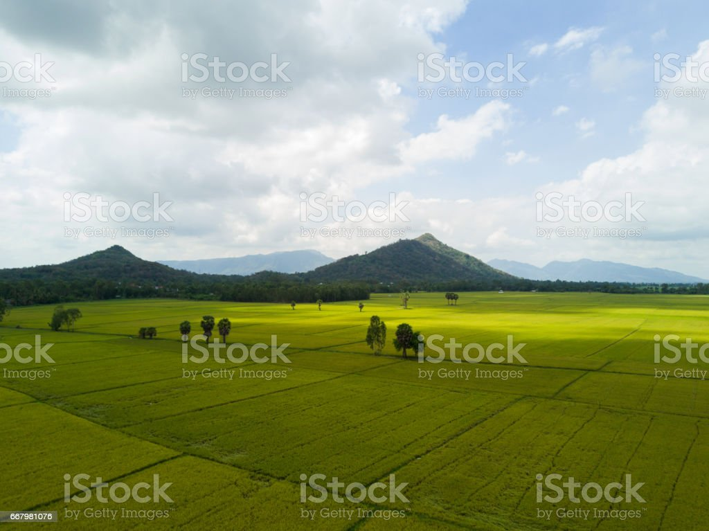 Paddy field with two moutains behind stock photo