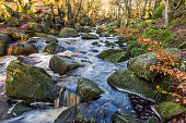 Padley Gorge in the Peak District National Park in Derbyshire, UK  -  Use of a slow shutter technique has given the water a smooth ethereal blurred look.