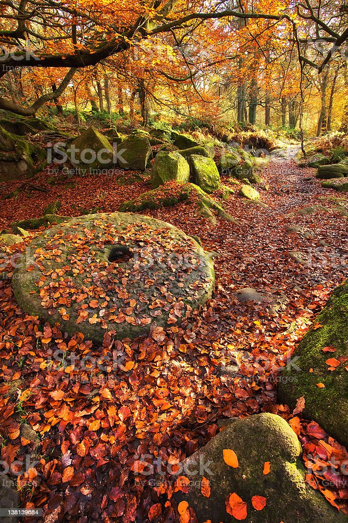 Padley Gorge in the Autumn & an old millstone wheel stock photo
