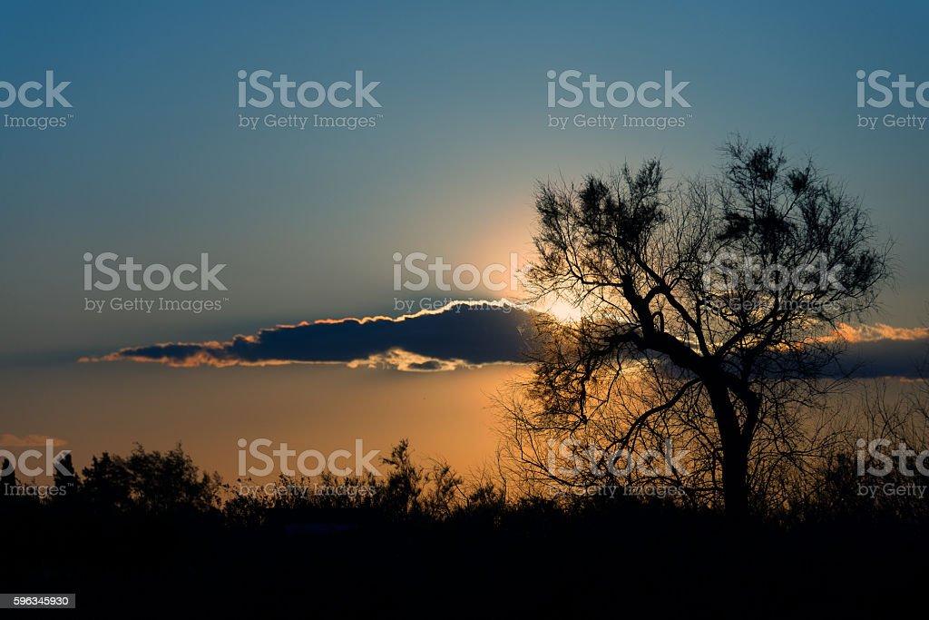 Paesaggio al tramonto, Camargue, Francia royalty-free stock photo