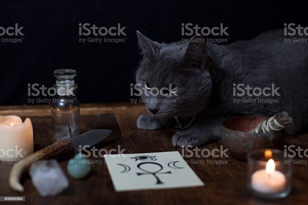 Pagan Altar with Cat stock photo