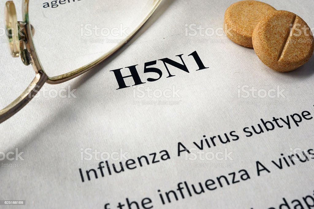 Page of hospital form with diagnosis h5n1 and glasses. stock photo