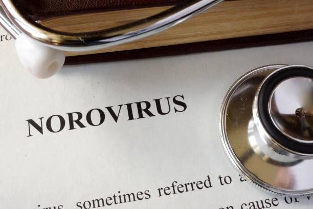 Page with diagnosis Norovirus. stock photo