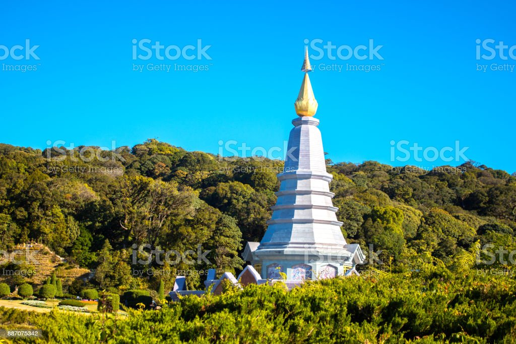 Pagoda and forest stock photo