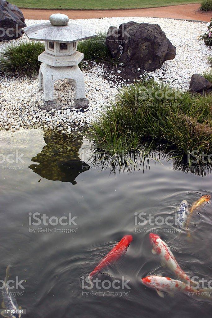 Pagoda Fish royalty-free stock photo