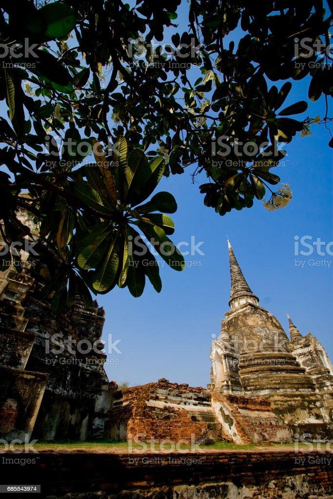 Pagoda of Wat Phra Si Sanphet 免版稅 stock photo