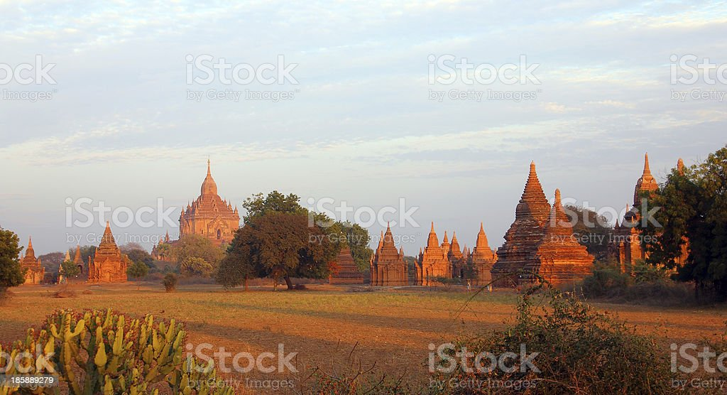 Pagodas in the evening sun royalty-free stock photo