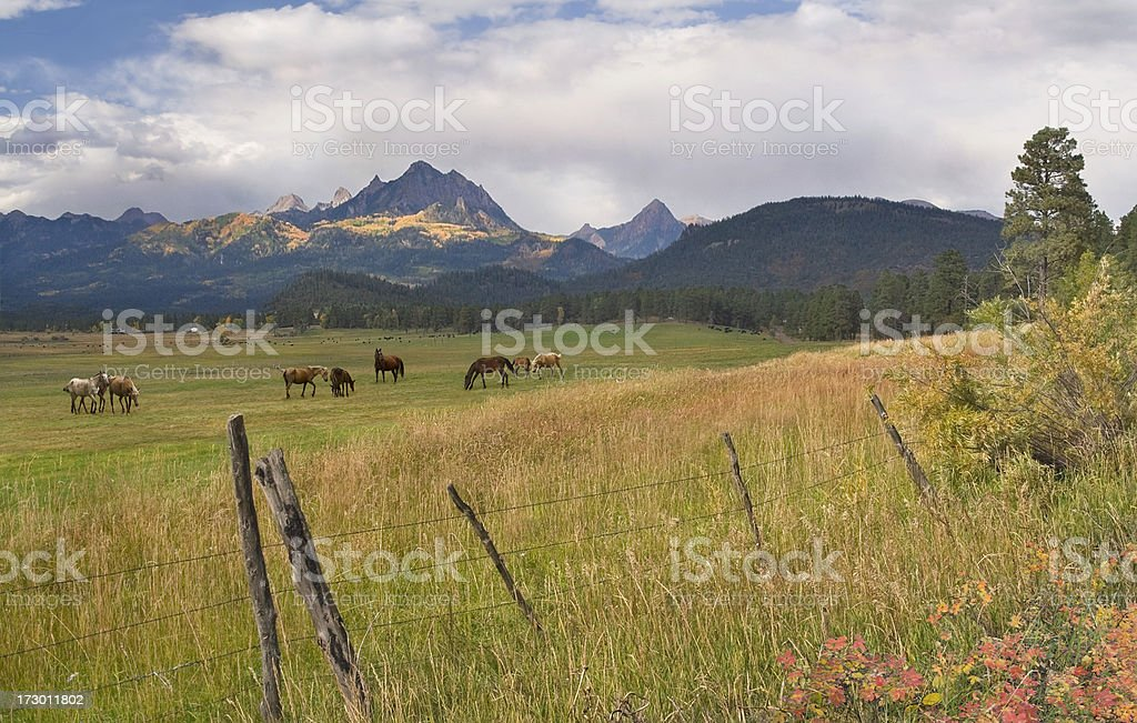 Pagosa Ranch in Autumn royalty-free stock photo