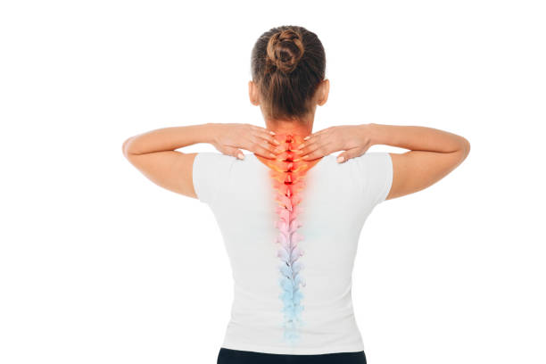 Pain in the spine. Composite of image spine and female back with backache. Pain in the spine. female back with backache, pain at cervical spine human neck stock pictures, royalty-free photos & images