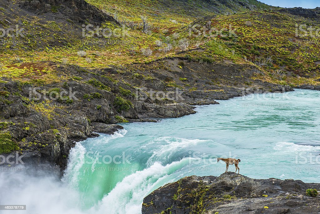 Paine River and Salto Grande waterfall stock photo