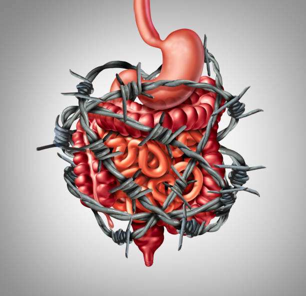 painful digestion - constipation stock pictures, royalty-free photos & images