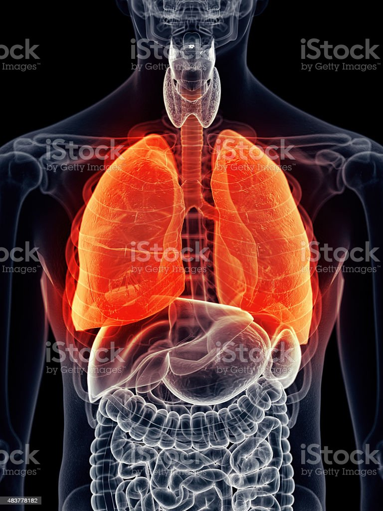 painful lung stock photo