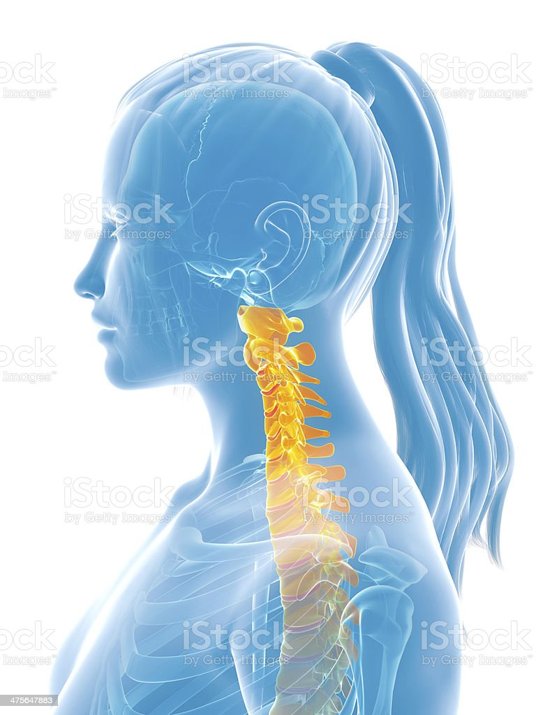 painful neck royalty-free stock photo