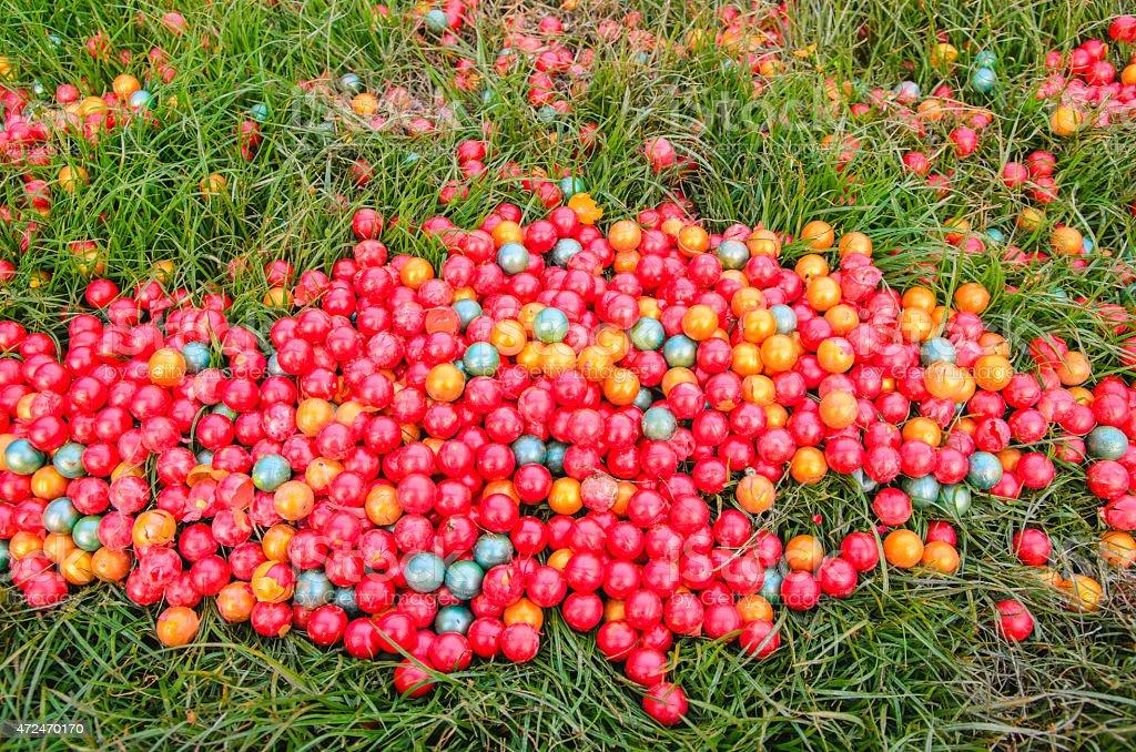 Paintball of grass stock photo