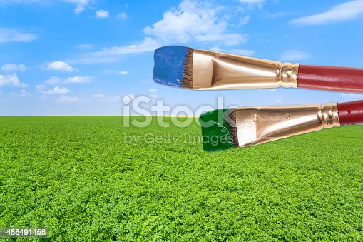 istock paintbrushes on agrarian field under blue sky 488491458