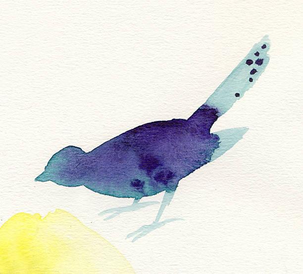 Painted blue watercolor bird picture id172702046?b=1&k=6&m=172702046&s=612x612&w=0&h=bgfy8ho ki8peseeg7ixcndfgu7ps4jt7vxaiekrtzw=
