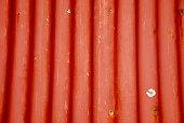 Painted Corrugated Iron Sheet