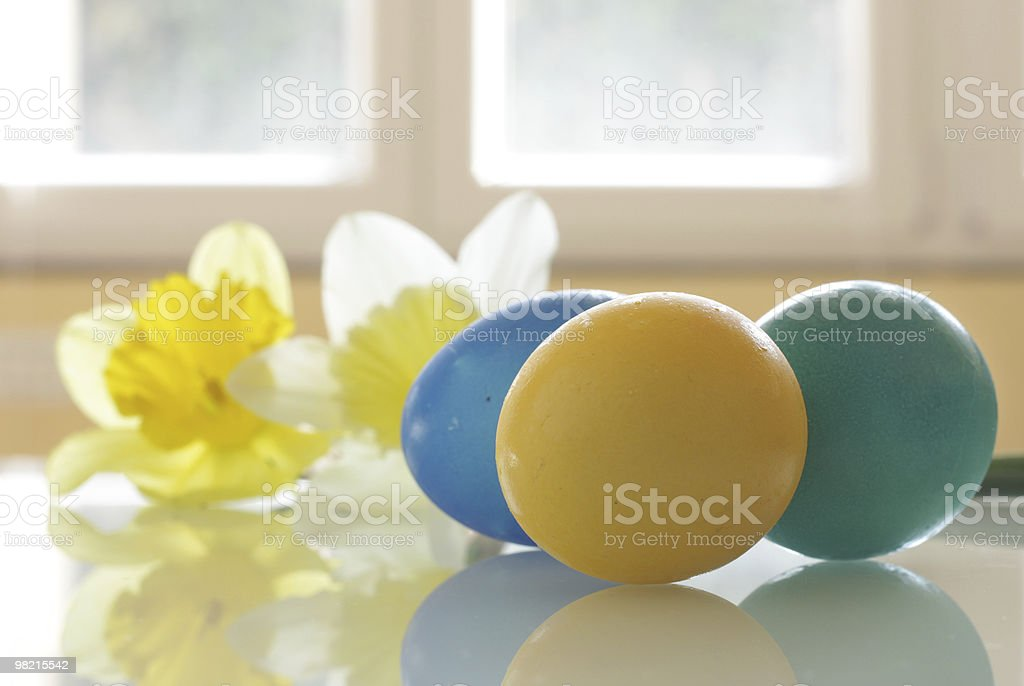 Painted Easter Eggs and Daffodils royalty-free stock photo