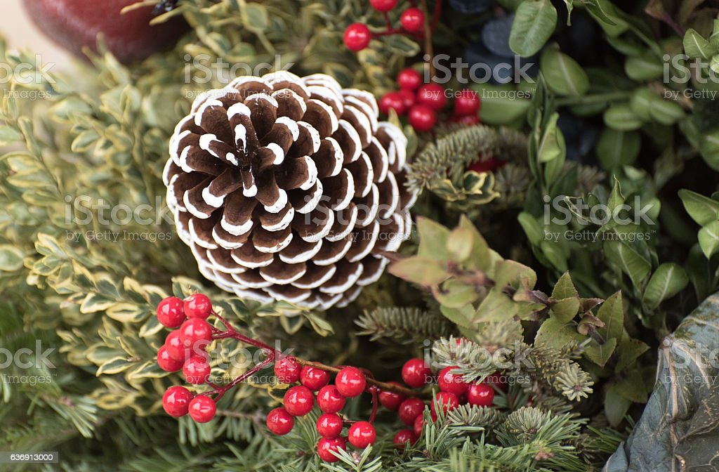 Painted fir-cone stock photo