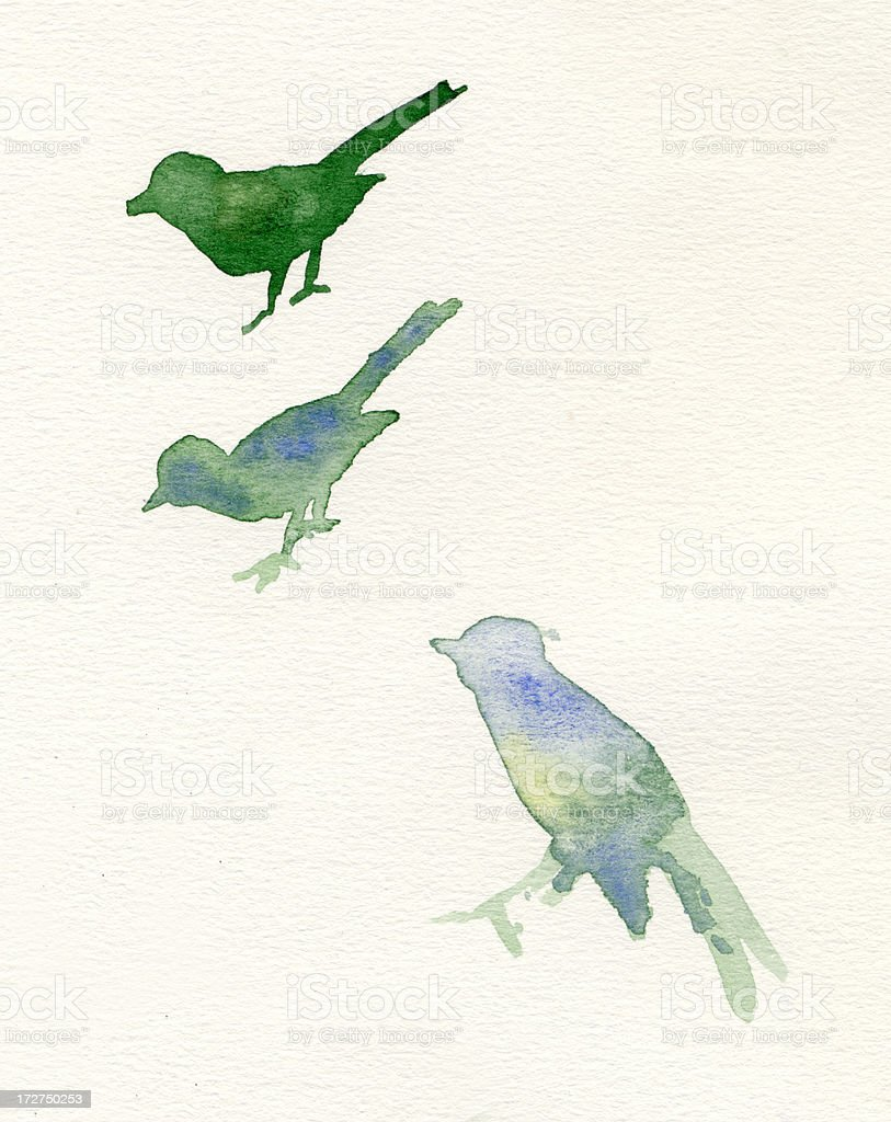 Painted green watercolor birds stock photo