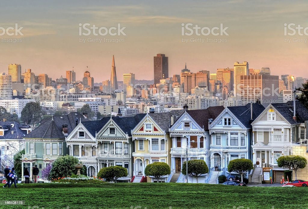 Painted Ladies at dusk stock photo