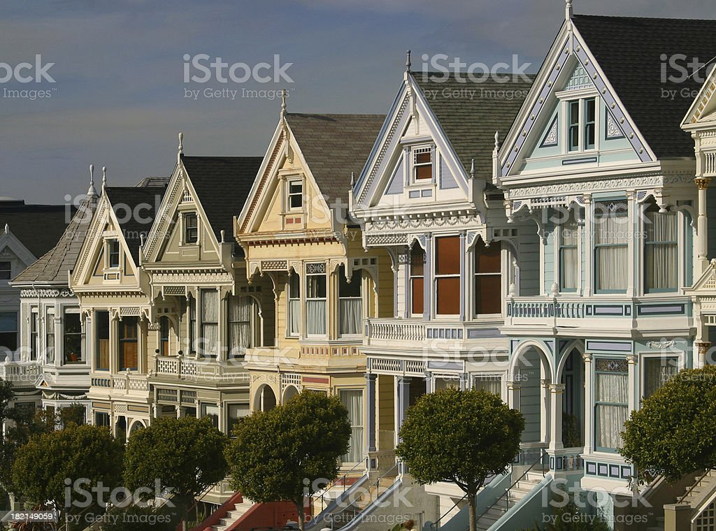 Painted Ladies royalty-free stock photo