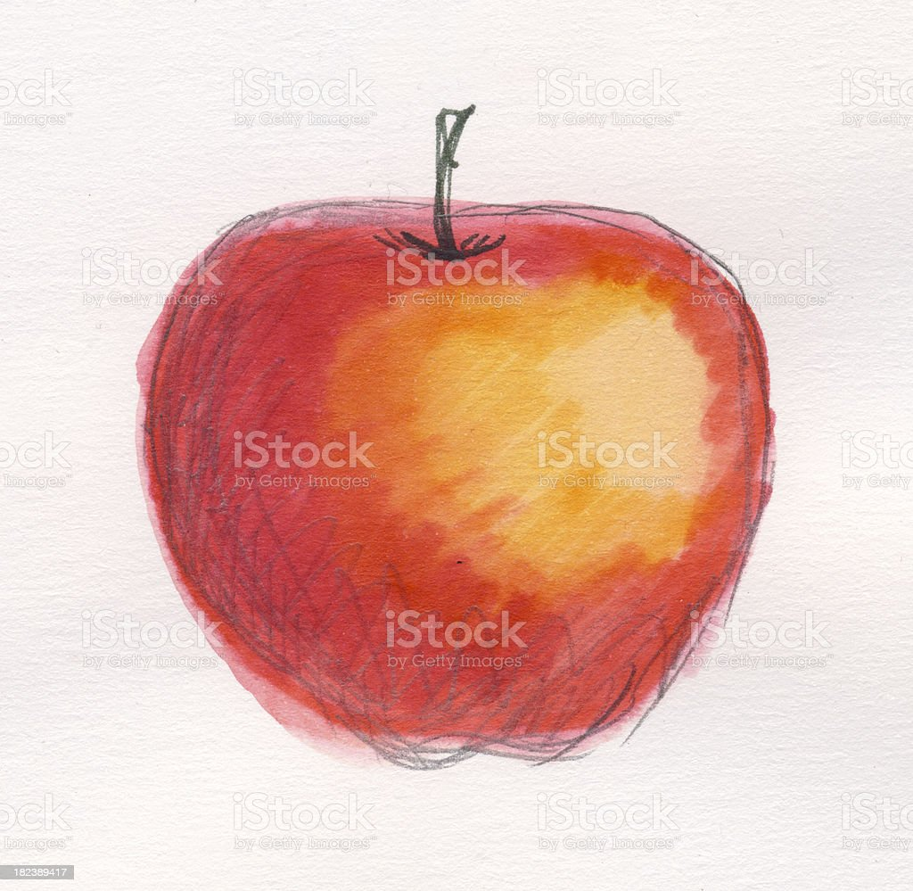 Painted watercolor apple stock photo