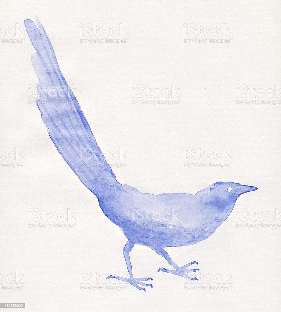 Painted watercolor bird stock photo