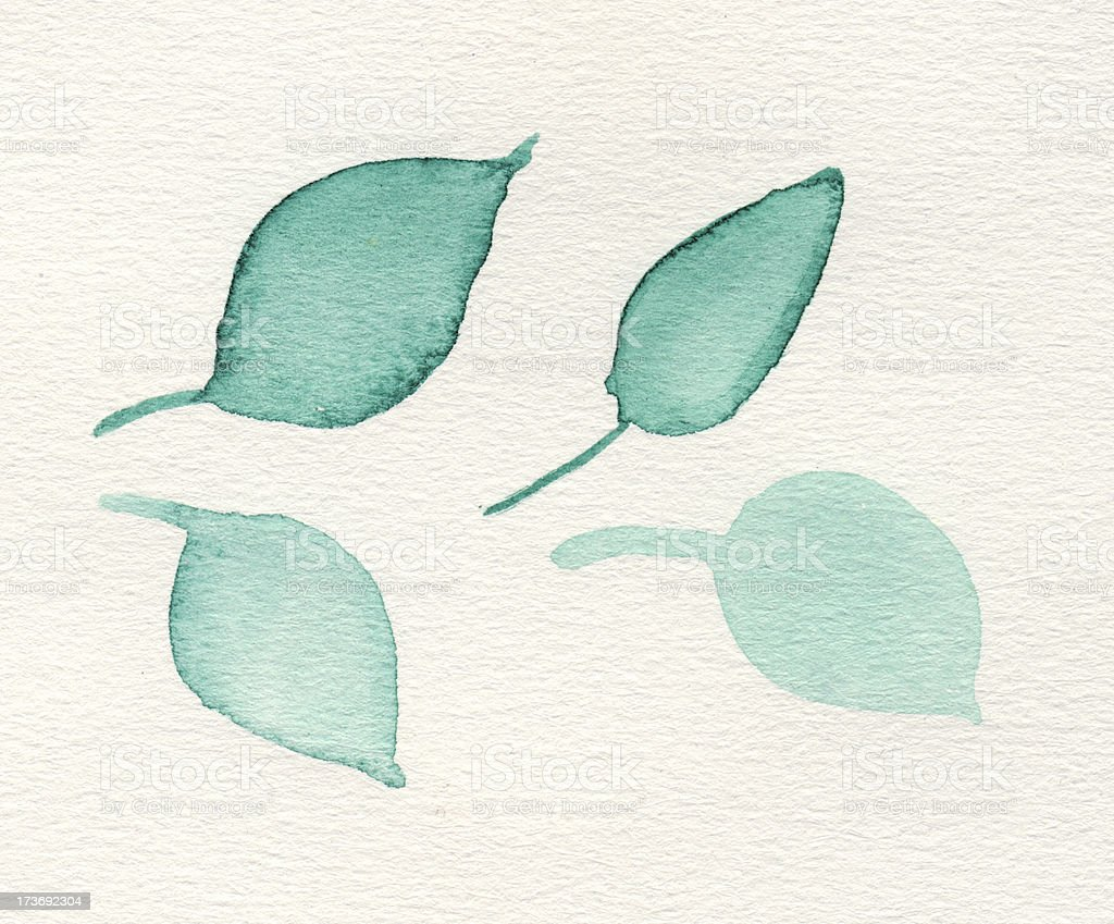 Painted watercolor leaves royalty-free stock photo