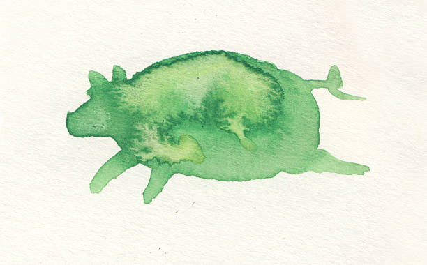 Painted watercolor pig stock photo