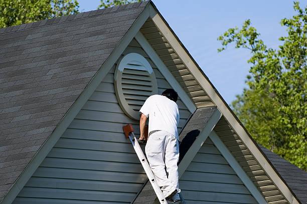 painter working at roofline - boya boyamak stok fotoğraflar ve resimler