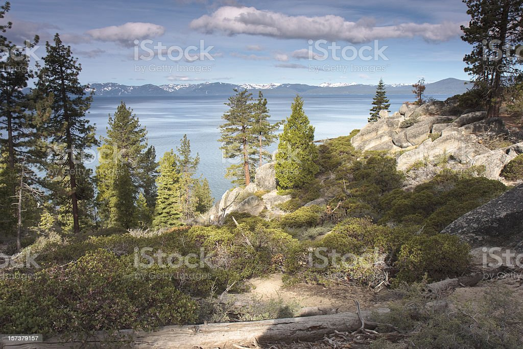 Painterly east shore of Lake Tahoe royalty-free stock photo