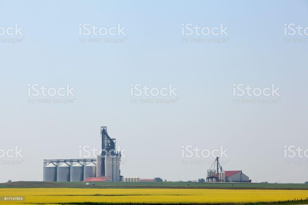 Painterly Modern Grain Storage Bins And Cash Crop Canola Stock Photo