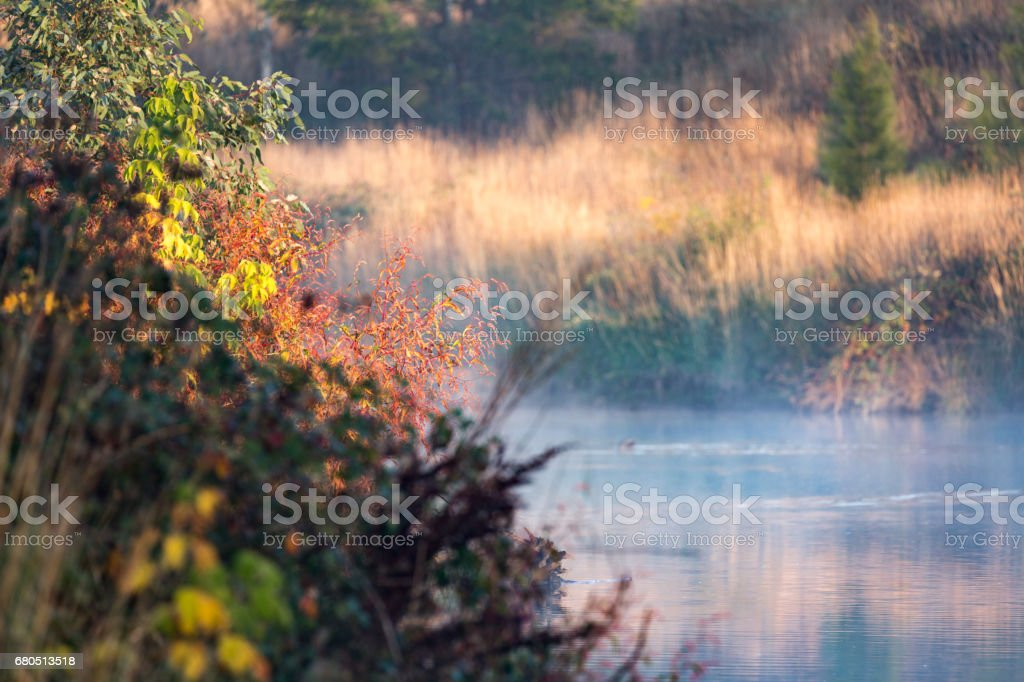 Painterly river view in the autumn season stock photo