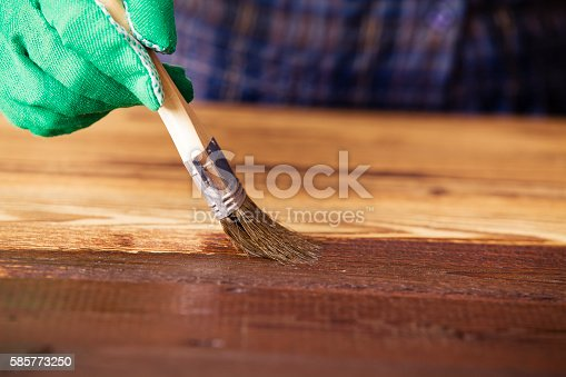 istock Painting and wood preservation 585773250