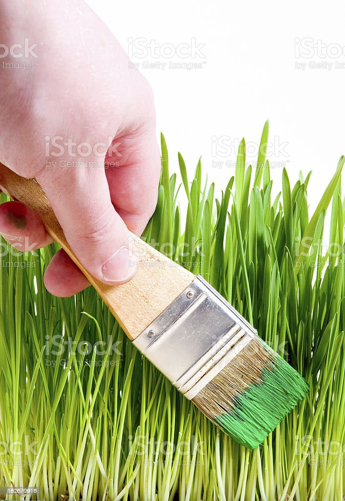 Painting green grass royalty-free stock photo