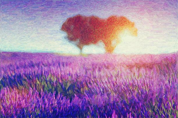 gemälde von lavendel-felder - farbfeldmalerei stock-fotos und bilder