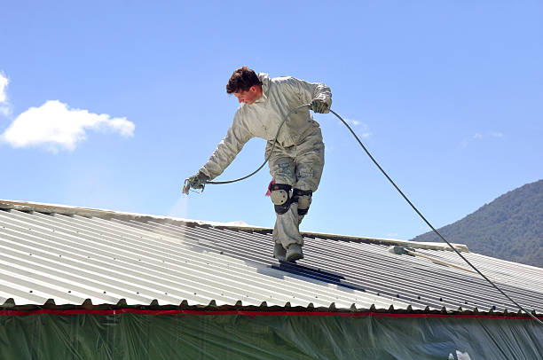 絵画の屋根 - ペンキ屋 ストックフォトと画像