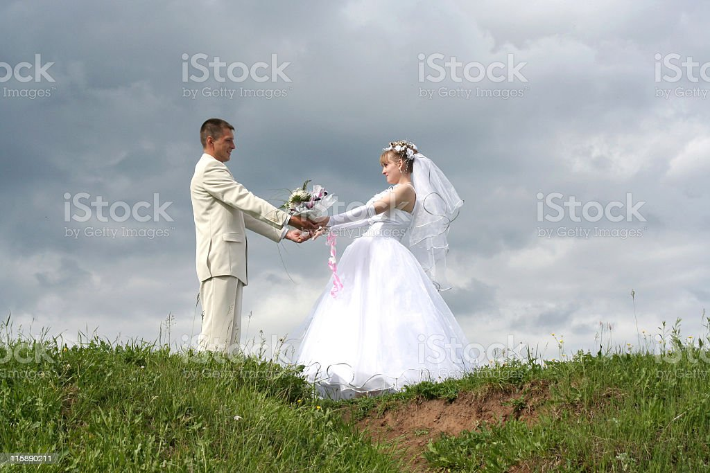 pair newlyweds royalty-free stock photo