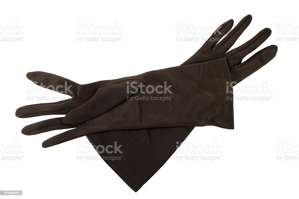 Pair Of 1950s Ladies Dress Gloves royalty-free stock photo