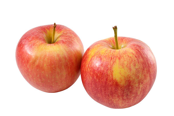 Pair of apples stock photo