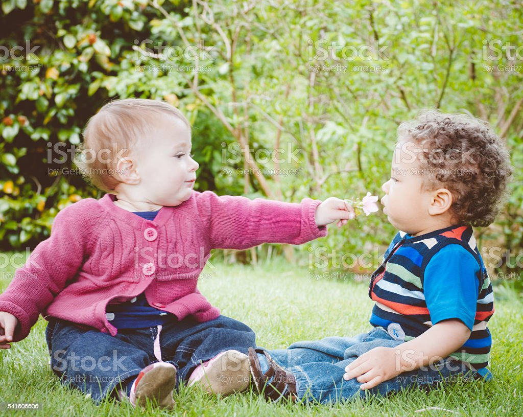 Pair Of Babies Playing With A Flower In The Park stock photo