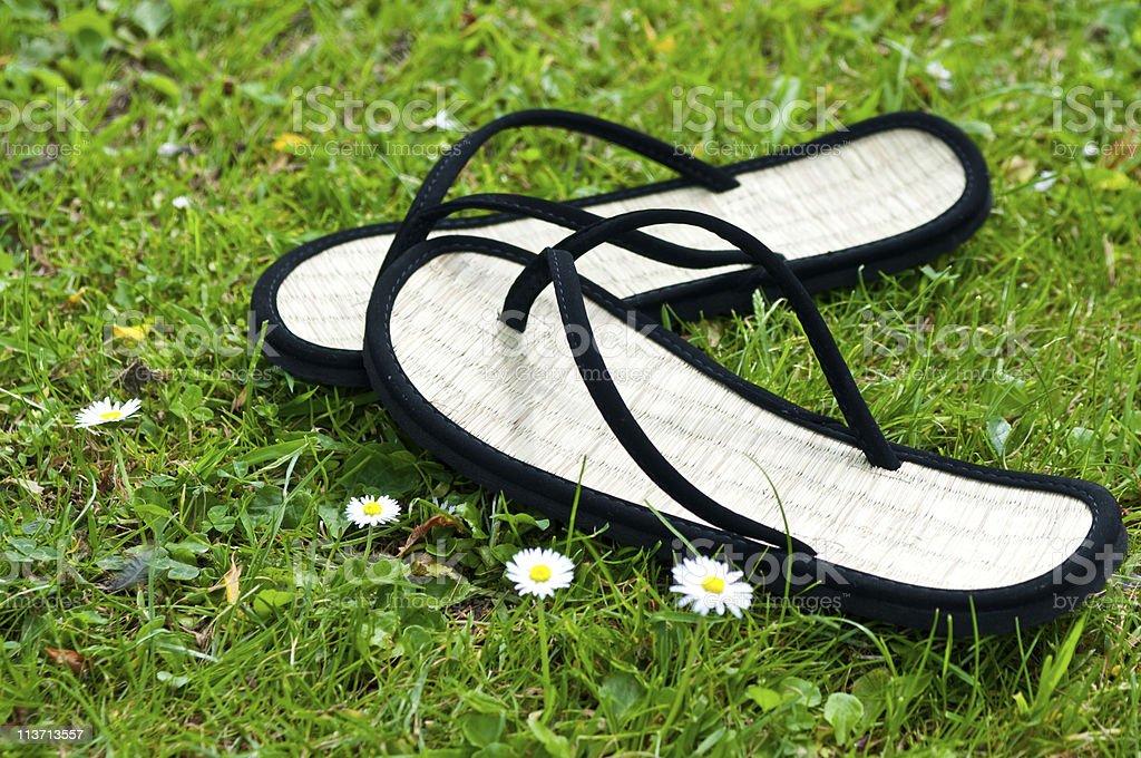 pair of black flip flops on grass royalty-free stock photo